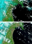Before and after satellite shots of Japan