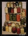 Jars full of all sorts of weird stuff