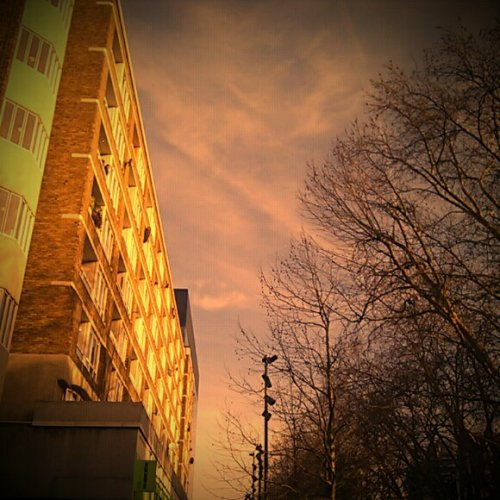 Buildings, trees, sky