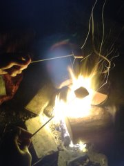 Toasting marshmallows on a campfire
