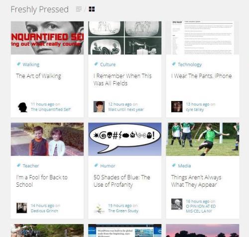 Freshly Pressed page screengrab