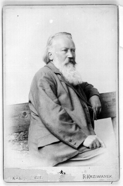 Brahms, sitting down, bearded