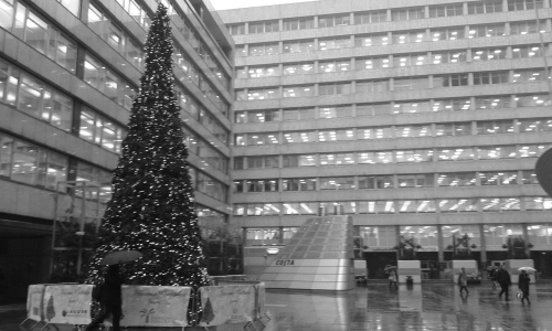 Christmas tree in front of office buildings