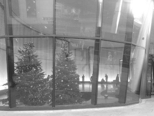 Trees in office reception