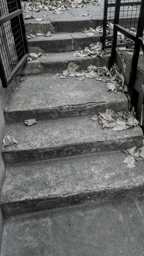 Steps and leaves